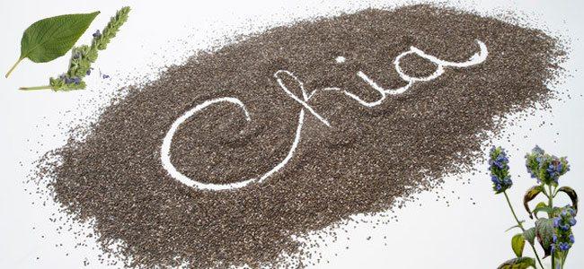 Σπόροι chia - Ιδιότητες και χρήσεις ...Τι είναι οι Σπόροι chia?