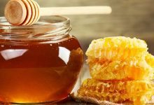 Έρευνα: Το Ελληνικό μέλι το πιο θρεπτικό/ευεργετικό ανάμεσα σε 48 είδη!